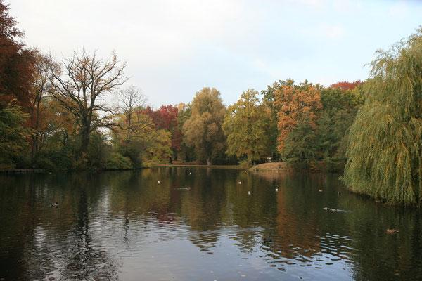 Herbstfarben an der Kanaltrave