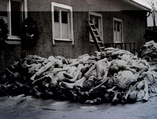 mehr als 50.000 Menschen überlebten das Lager nicht, Quelle: ständige Buchenwald-Ausstellung