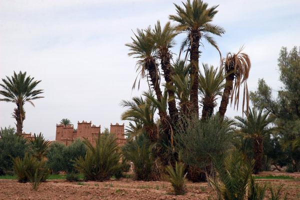 """An der Straße der 1000 Kashbas Richtung Süden. stlich des Hohen Atlas führt die """"Straße der Kasbahs"""" von Quarzazate durch das Dadestal, weiter durch Geröllwüste, vorbei an der senkrechten Todra-Schlucht bis hin zum Beginn der größten Datteloase Marokkos."""