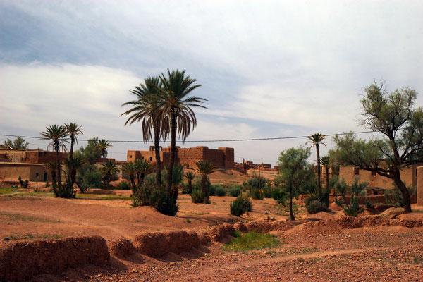 Am Rand der Wüste