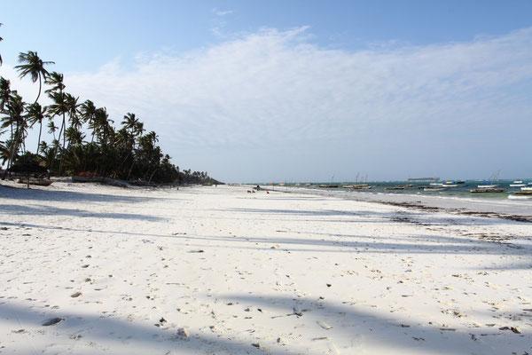 Knallweißer Sand, von prächtigen Kokospalmen umsäumt, so sieht die Ostküste von Sansibar aus.