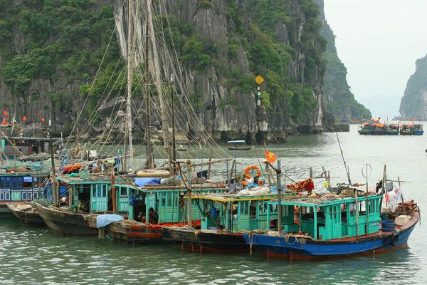 in der Bucht vor Ha-Long-City ist alles noch ursprünglich