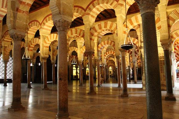 Unter der Kalifendynastie der Omaijaden erreichte sie ihre höchste kulturelle Blütezeit. Während dieser Zeit wurde die berühmte Mezquita de Córdoba (Moschee) errichtet.