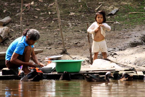 Das Leben am Fluss