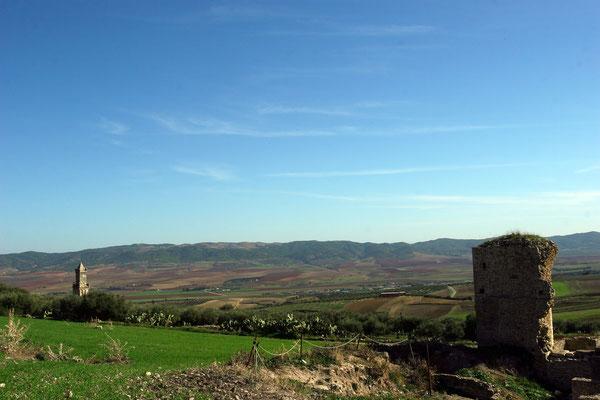Herrlicher Blick auf die umliegenden Felder des Oued Khalled