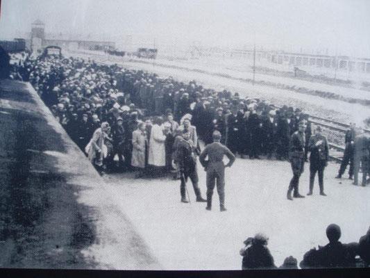 das Wirken der SS an der Selektonsrampe, Quelle: Auschwitz-Museum
