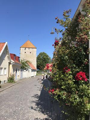 Die kleine Hansestadt Visby liegt an der Westküste Gotlands. Sie gilt als eine der besterhaltensten Hansestädte und ist deshalb seit dem Jahr 1995 auch UNESCO Weltkulturerbe und Partnerstadt von Lübeck.