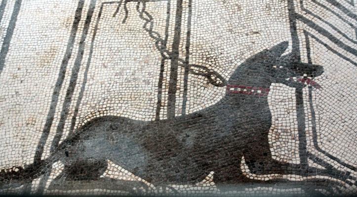 Das Haus des tragischen Poeten ist für sein herausragendes Mosaik CAVE CANEM-Hüte Dich vor dem Hund-berühmt, das sich gleich am Haupeingang des Hauses befindet.