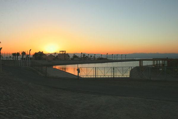 zurück in Aqaba