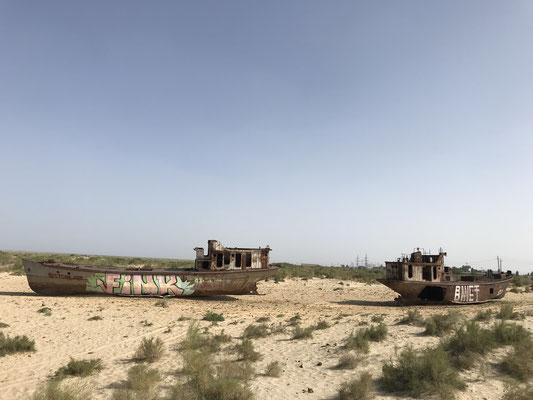 Unter sowjetischer Herrschaft wurden dann riesige Bewässerungsflächen für Baumwollplantagen errichtet, mitten in der Wüste. Es wurden hunderte Kilometer lange Kanäle gebaut, deren Wasser aus dem Aralsee und seinen beiden Zuflüssen stammt.
