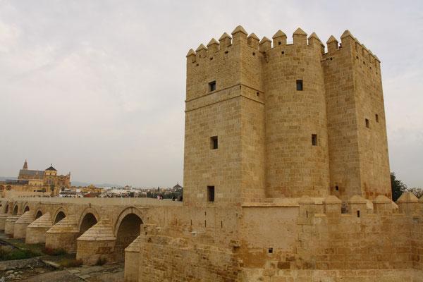 Gegenüber der Mezquita, auf der anderen Seite des Flusses thront er, der mächtige Torre de la Calahorra, eine arabische Festung aus dem 14. Jhdt., die der damals bedeutsamen Römischen Brücke und der Stadt Schutz geben sollte.