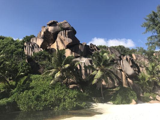 Die Grand Anse ist ein wilder Strand und ihr traumhaftes Szenarion macht sie absolut einzigartig. Sie ist  weniger besucht als  andere Traumstrände auf La Digue (wie z.B. die Anse Source d'Argent), aber mindestens genauso schön.
