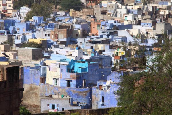 Jodhpur wird auch die blaue Stadt genannt, viele Häuser sind blau gestrichen.