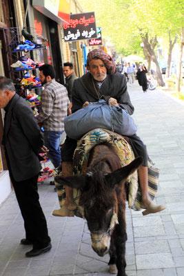 ...mit dem Esel zum shoppen durch die Hauptstraße sieht man auch nicht alle Tage
