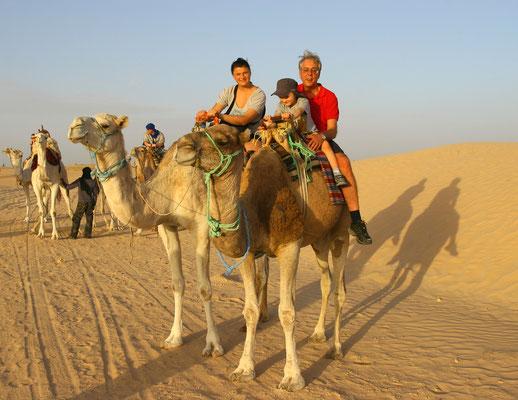 Kamelausflug im Sonnenuntergang am Rand der Wüste