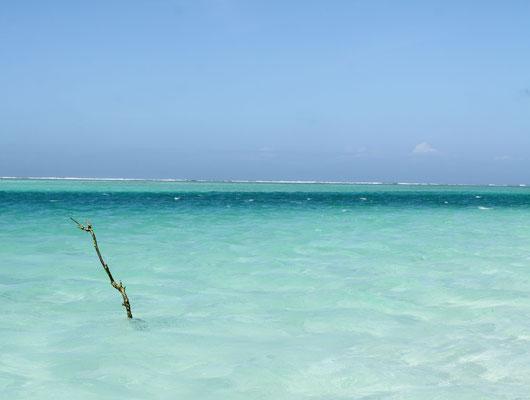 Daneben smaragdgrünes Wasser, Korallen und bunte Fische.
