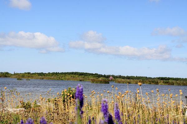 Drei der vier größten Seen liegen in Mittelschweden, in Götaland, dazu etliche kleine Seen und Flüsse
