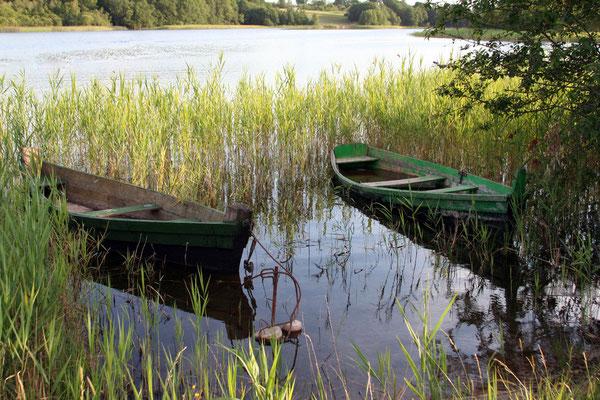 Idylle an einem der vielzähligen Seen