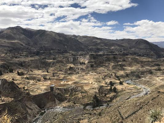 Die gewaltige Schlucht des Rio Colca mit den noch heute bewirtschafteten Terrassen aus der Inkazeit gehört zu den großen landschaftlichen Erlebnissen in Peru.