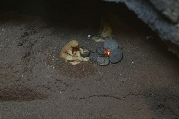 Durch Nachbildungen von den Wohnhöhlen, in denen die Guanchen gelebt hatten und mittels einigen Fundstücken, wie Werkzeugen und Keramiken konnte die Welt der Guanchen rekonstruiert und für die Nachwelt dargestellt werden