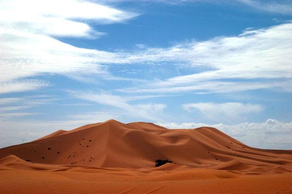 Die Sanddünen des Erg Chebbi erreichen eine Höhe von bis zu 150 Metern.