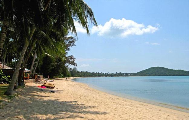 Mit 233 qkm Fläche ist Ko Samui, nach Ko Phuket und Ko Chang, die drittgrößte Insel Thailands.