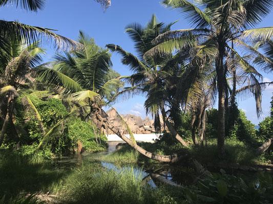 Malerisches Bild einer kleien Lagune unmittelbar am Strand befindlich.