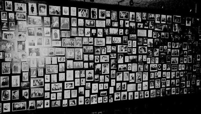 Bilder vom Heer der Namenlosen, Quelle: Auschwitz-Museum