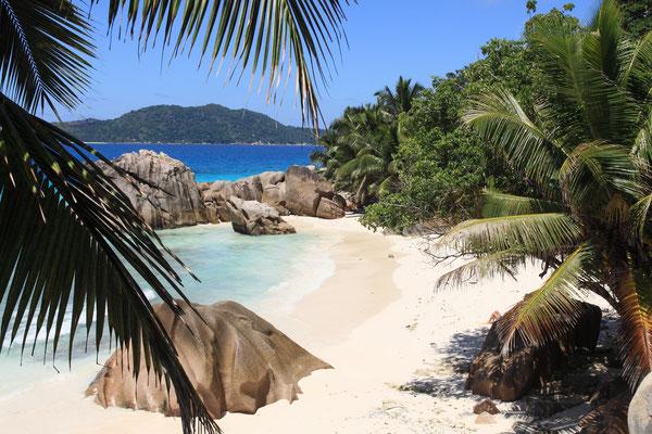 Kleine zauberhafte Buchten mit knallweißem und feinen Korallensand finden sich überall.