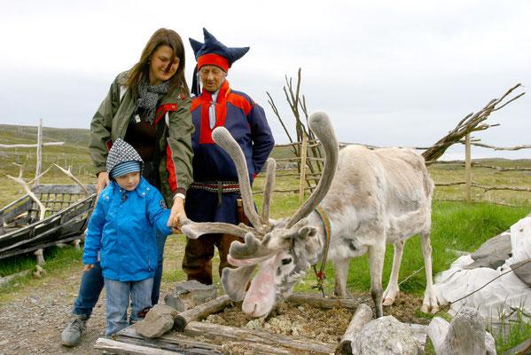 Auf dem Weg zum Nordkap Besuch bei den Samis in der Finnmark, einem Volk von Nomaden, die mit ihren Rentierherden abwechselnd zur Küste und ins Landesinnere ziehen.