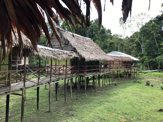 Viele seriöse Anbieter von mehrtätigen Ausflügen in den Regenwald findet man in Iquitos. Die Lodges sind sauber und ordentlich.
