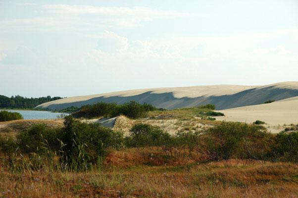 Die litauische Sahara oder Sahara des Ostens
