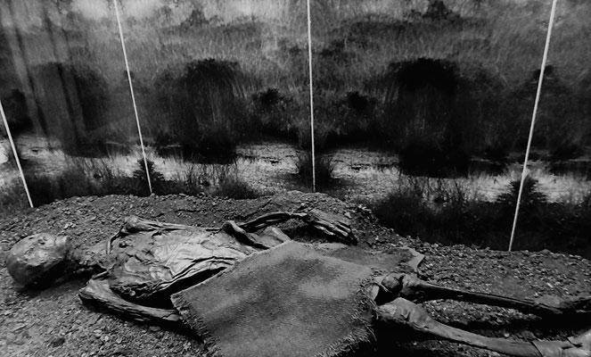 Die bis zu 2500 Jahre alten, mumifizierten Leichname sind dank der konservatorischen Wirkung von Mooren außerordentlich gut erhalten. Sie geben unter anderem Einblicke in die Lebensumstände der Verstorbenen