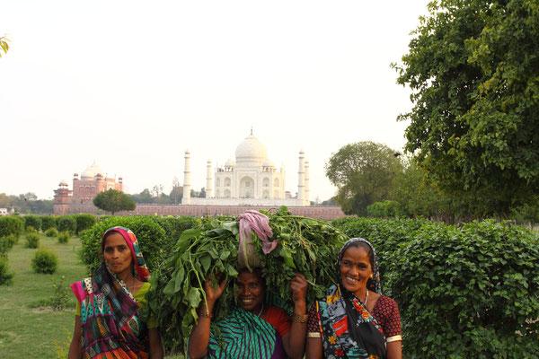 Sonnenuntergang am Taj Mahal auf der anderen Seite des Yamuna-Flusses.
