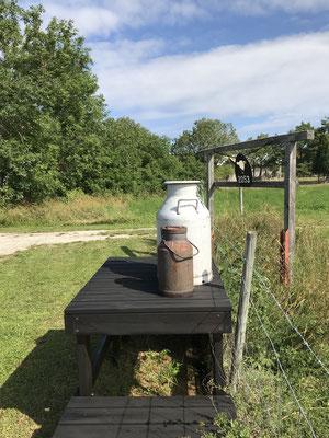 Diese alt wirkenden Milchkannen sind nicht Teil des Museums, sondern heute noch gebräuchlich.
