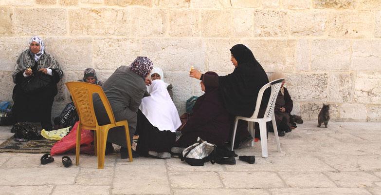 an der Mauer zum islamischen Museum