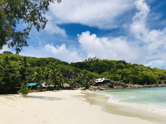 Zurück auf Mahe verbringen wir die letzten Tage am herrlichen Strand der Anse Takamaka, der sich im Südwesten von Mahé befindet  und den Inbegriff eines malerischen Strandes verkörpert, so schön fügt sie sich in das Gesamtbild der Umgebung ein.
