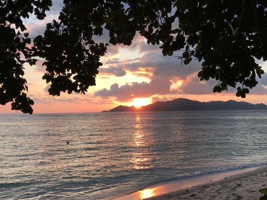 Etwas wehmütig ob des bevorstehenden Abschieds von der schönen Inselwelt genießen wir noch einen Sonnenuntergang an der Anse Bougainville.