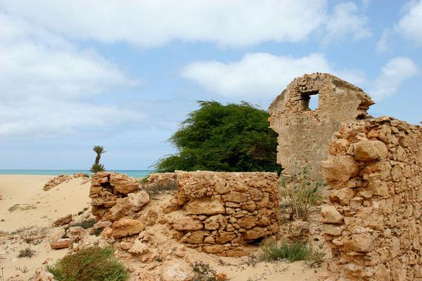Ruinen der ehemaligen Ziegelei