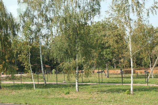 Der Friedhof von Tschernobyl für die Bestattungen der ersten Strahlenopfer