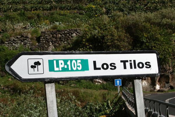 1983 wurde zunächst der Lorbeerwald Los Tilos und später, im November 2002, die gesamte Insel zum Biosphärenreservat der UNESCO erklärt.