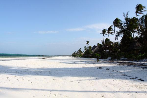 Sansibar lebt von seinen Traumstränden von Matemwe oder Jambiani an der Ostküste der Insel.