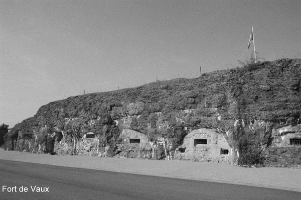 Erlebnisbericht eines Soldaten: Wir kamen am 28. März völlig erschöpft auf dem Vaux-Berg an. Von Gräben keine Spur; nur Grabenreste und Granattrichter, meist mit Wasser und Leichen gefüllt. Wir trieften vor Nässe. Man zitterte vor Kälte am ganzen Leibe