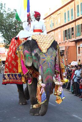 Hauptattraktion war der überaus schön geschmückte Elefant