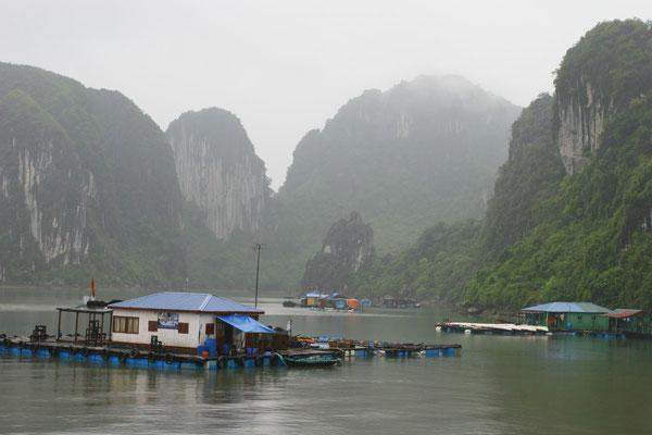Am Golf von Tongking gelegen, ragen hier rund 2000 Inseln aus dem Meer.