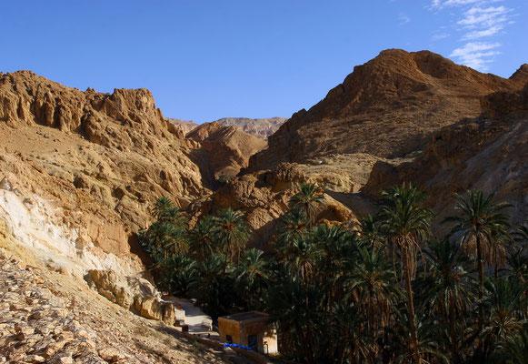 Malerisches Oasenstädtchen Chebika an der Grenze zu Algerien. Chebika ist ein kleines Dorf und wurde bereits zur Römerzeit mit dem Namen Ad Speculum erwähnt. Es diente als sog. Nachrichtenstation der Bewachung des Karawanenweges von Gabes nach Algerien.