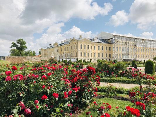 Es wurde vom gleichen Architekten entworfen, der auch den Winterpalast in St. Petersburg gebaut hatte und wird oft als das VersailIes des Baltikums bezeichnet. In den Ausstellungsräumen können kulturhistorische Ausstellungen besichtigt werden.