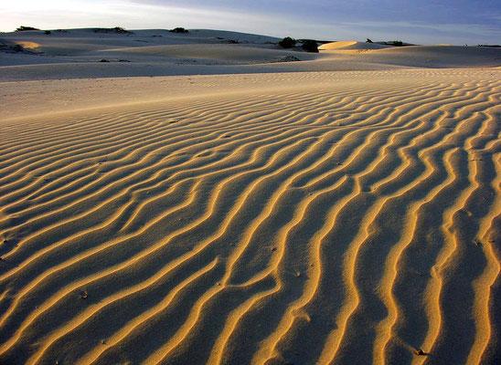 Der Wind trägt staubfeinen Saharasand hierher, den er als Wanderdünen über die Insel treibt