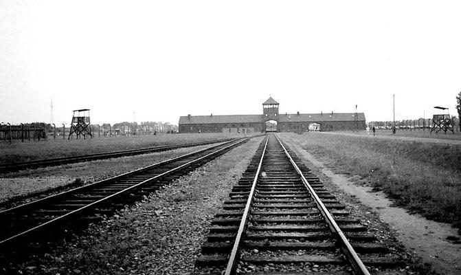 Auschwitz, Sobibor, Belzek, Majdanek, Treblinka- Zentren des organisierten Genozids