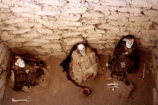 Die Knochen liegen mehr oder weniger offen in der Wüste herum, genauso wie Keramikteile und andere Überbleibsel, die die Grabräuber liegen lassen haben